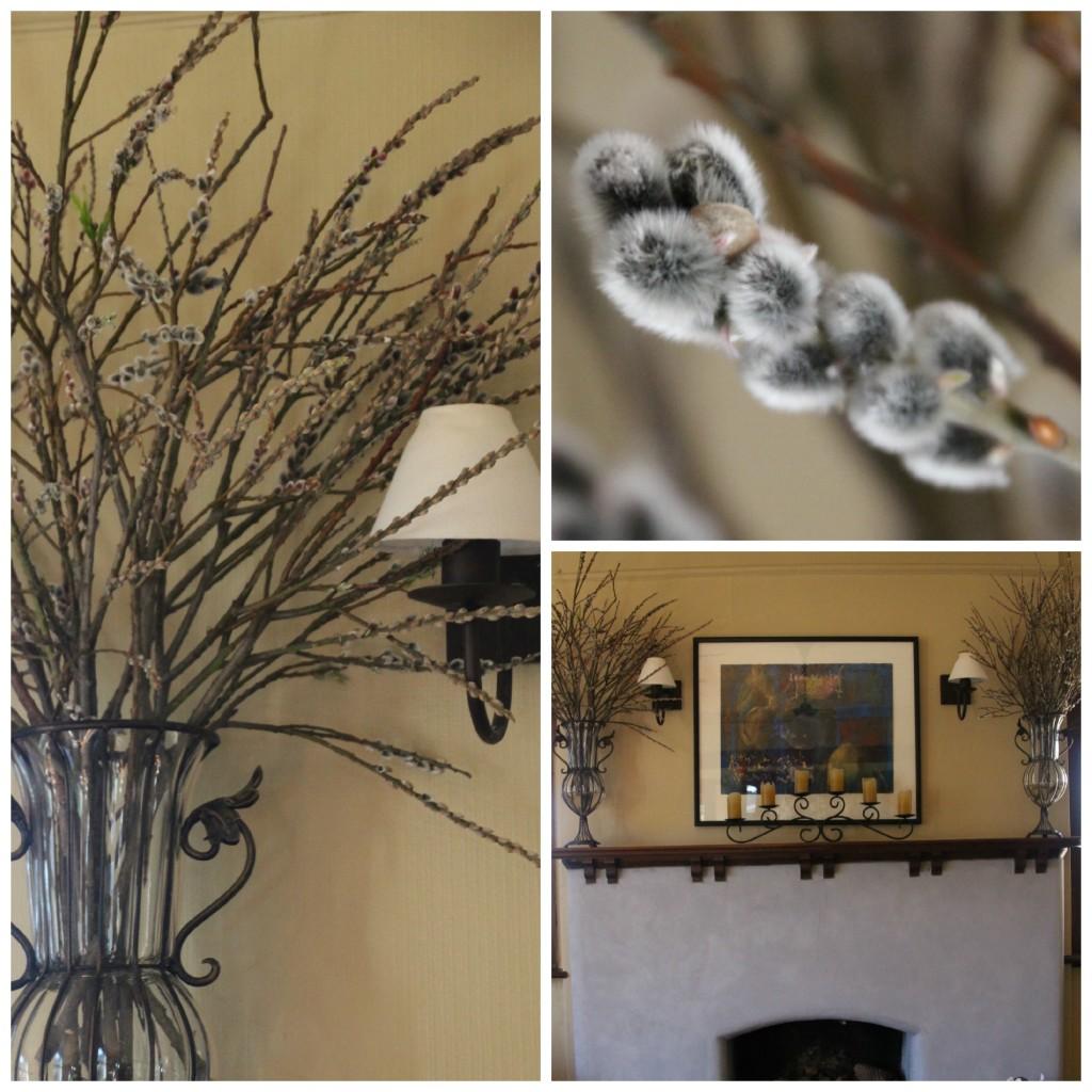 PicMonkey Collage willow 2