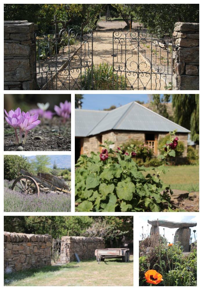 PicMonkey Collage 9